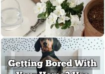Getting Bored With Your Home? Use These Interior Design Ideas